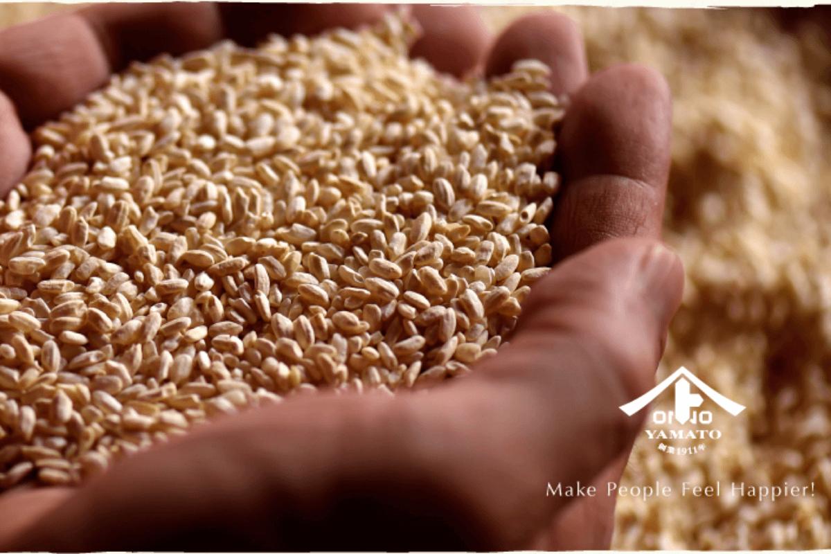 日本初登場!食物繊維たっぷりの大麦と米麹だけからなる甘酒『大麦甘酒』で腸美人になろう!