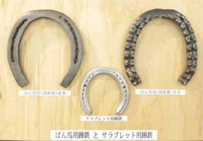 https://banei-keiba.or.jp/topics_detail.php?id=391&display=pc