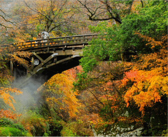 石川県の人気観光地「山中温泉 」