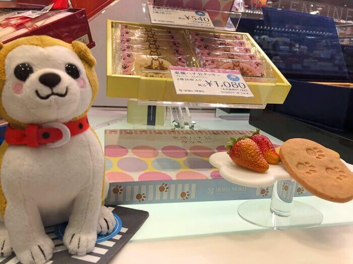 東横ハチ公クッキー/ヨックモック 渋谷のおすすめお土産