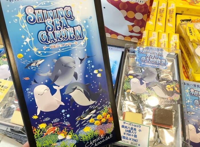 チーズ&ショコラケーキ/八景島シーパラダイス