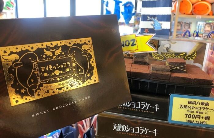横浜八景島限定 天使のショコラケーキ/八景島シーパラダイス