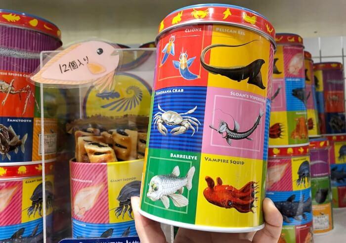 限定チョコレートパイ/沼津港深海水族館(シーラカンスミュージアム)