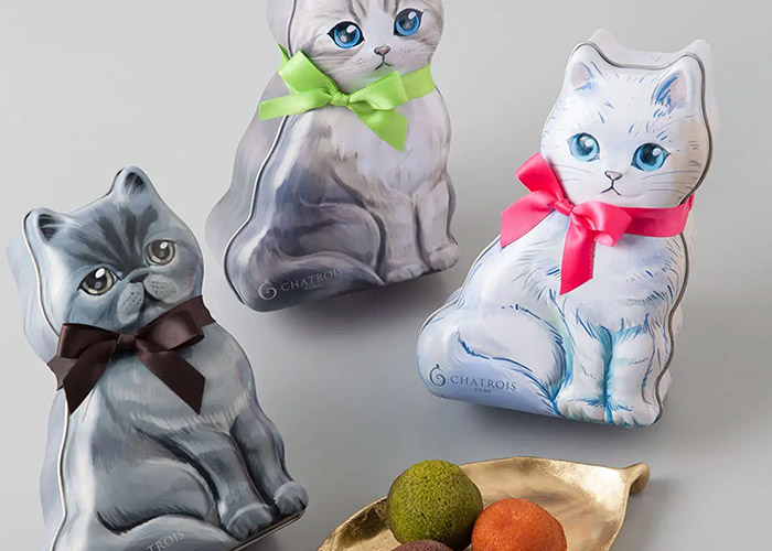 猫缶フィナンシェ/シャトロワ 新神戸駅のお土産