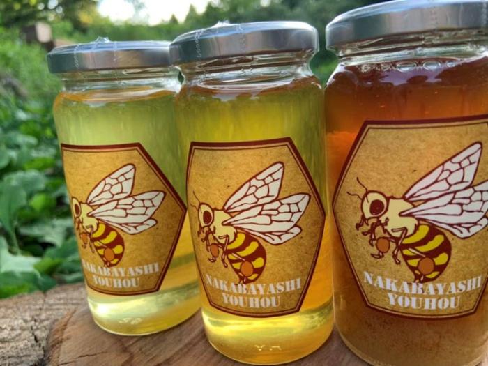 蜂蜜/中林養蜂 勝浦のお土産