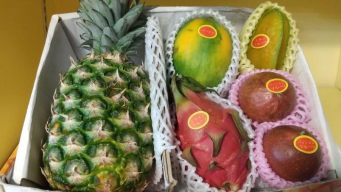フルーツ/フルーツ市場 沖縄国際通りお土産